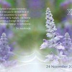 दर्शन संदेश २४ नवंबर २०१७